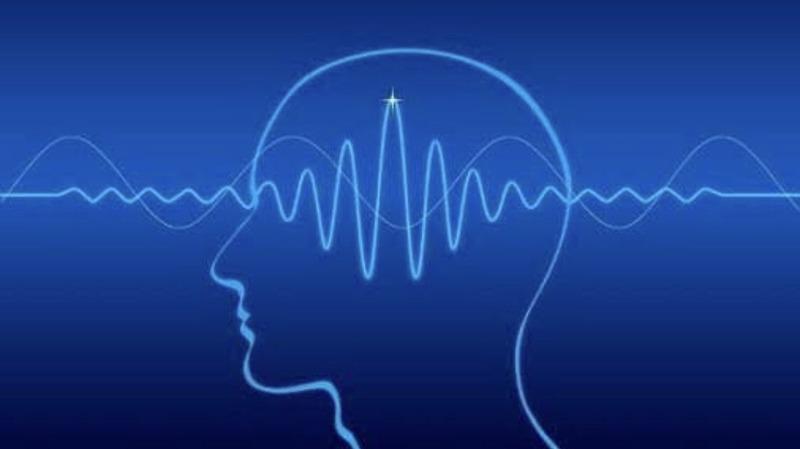 睡眠と脳波